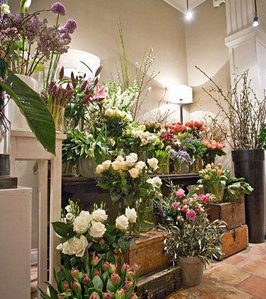 Beispiel: Riesige Auswahl an Blumen, Foto: Himmel und Erde.