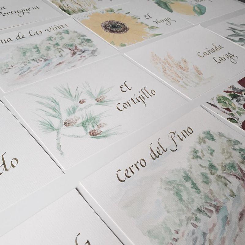 Colección de meseros de frutales, flores y cultivos
