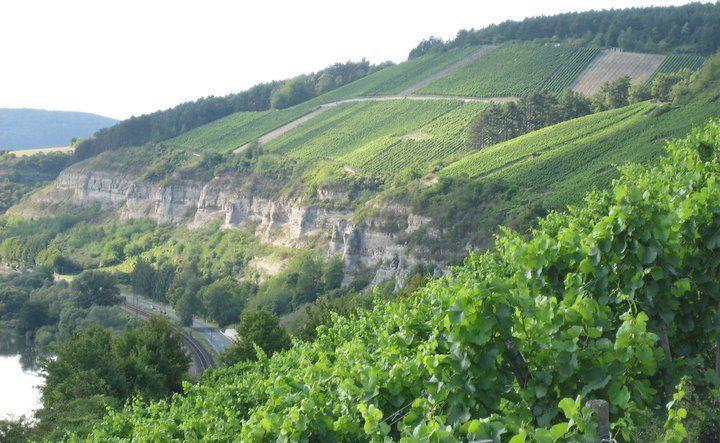 Beispiel: Weinhänge, Foto: Weingut am Stein.