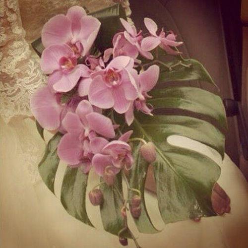 Ramo de orquídeas rosa fucsia