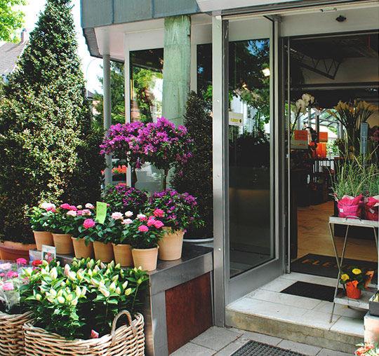 Beispiel: Ladenimpressionen, Foto: Blumenhaus am Hochweg.