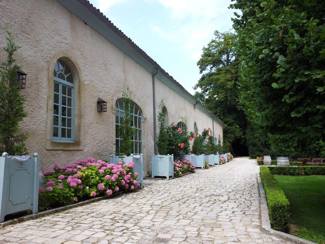 Les Chais du Château de BOUCQ du XIXème siècles (salles de réceptions)