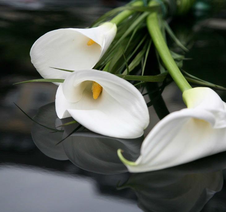 Beispiel: Blumen für Ihre Hochzeit, Foto: Blumenhaus am Hofgarten.