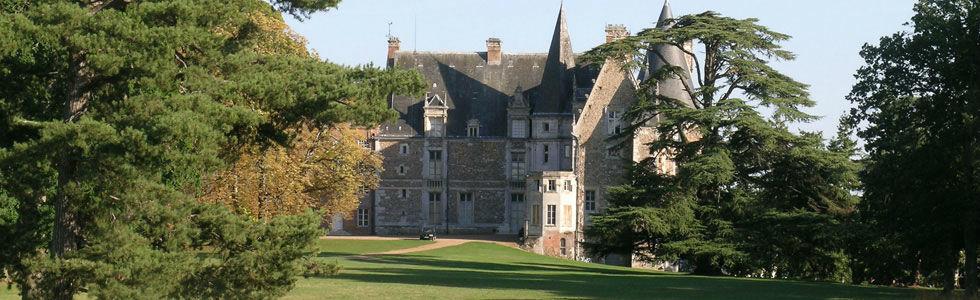 vue du château depuis le parc