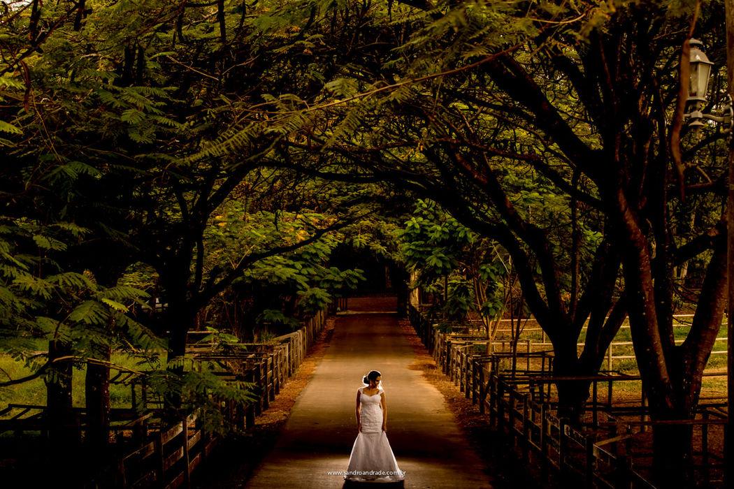 Casamento em Brasilia-DF. Previa de noiva da querida Roberta no Haras da Lenda. Sandro Andrade Fotografia