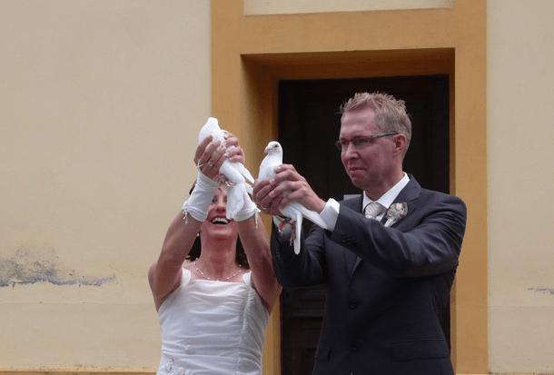 Beispiel: Handtauben, Foto: Hochzeitstauben Paradies.