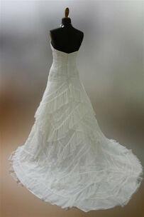 La Gardenia Bianca di Assunta Iacobucci