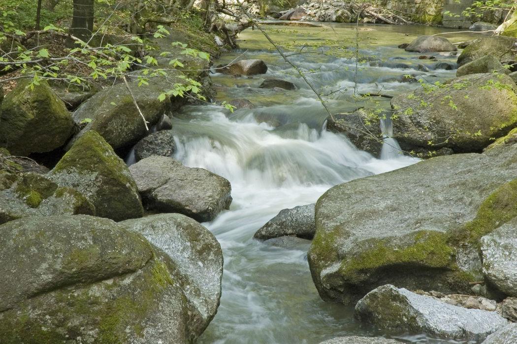 Beispiel: Umgebung - Schlucht, Foto: Burg Clam.