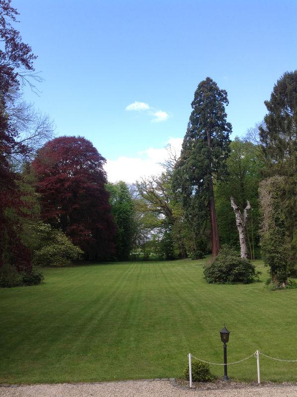 Le Parc au Château Blanc Olivier Sinic