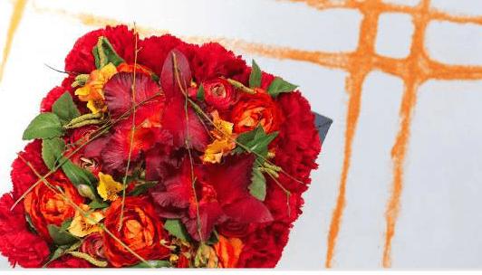 Flores Lloveras