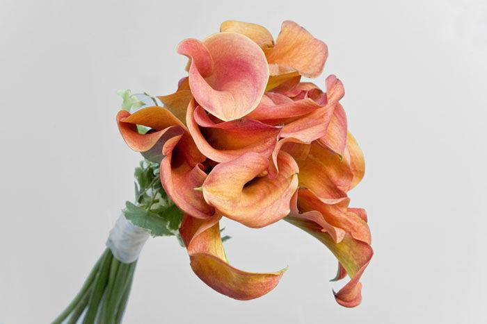 Beispiel: Professionelle Hochzeitsfloristik, Foto: Blumen Maarsen.