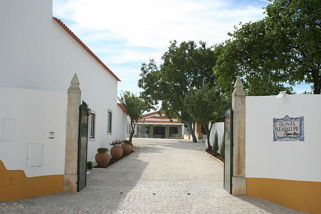 Foto: Quinta Guadalupe