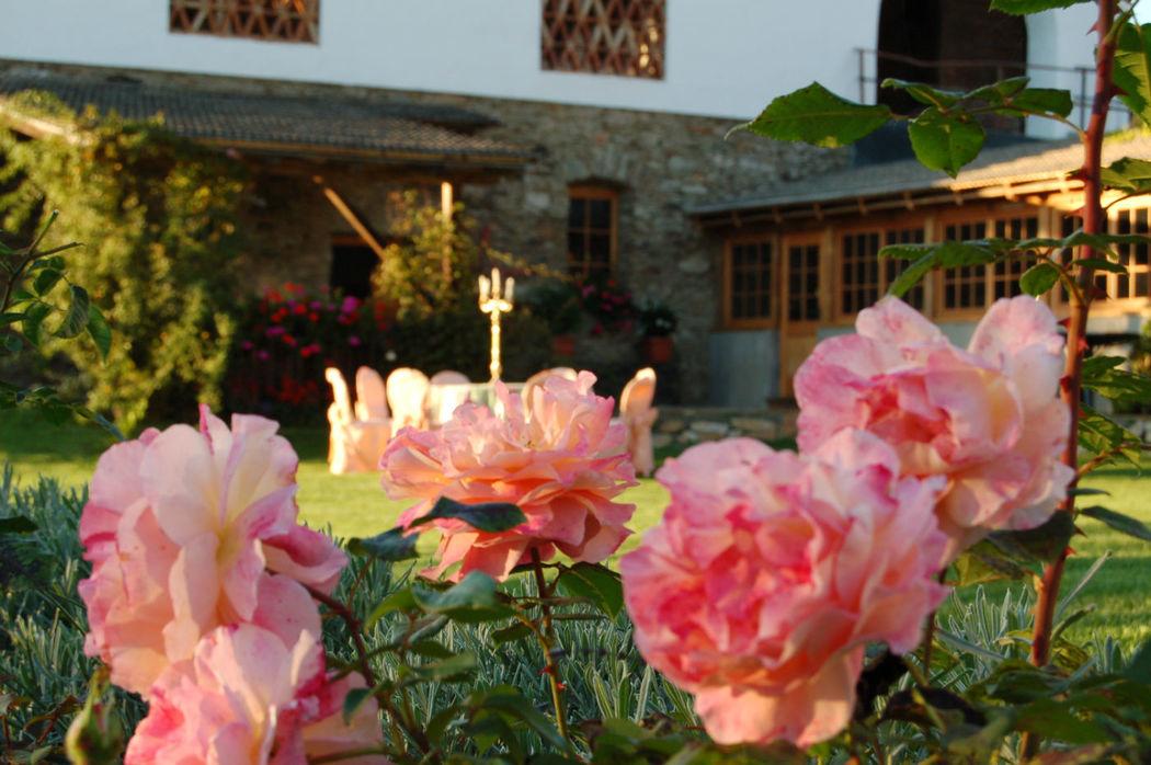 Ein Garten voller Rosen, Foto: Lilli´s Feststadl