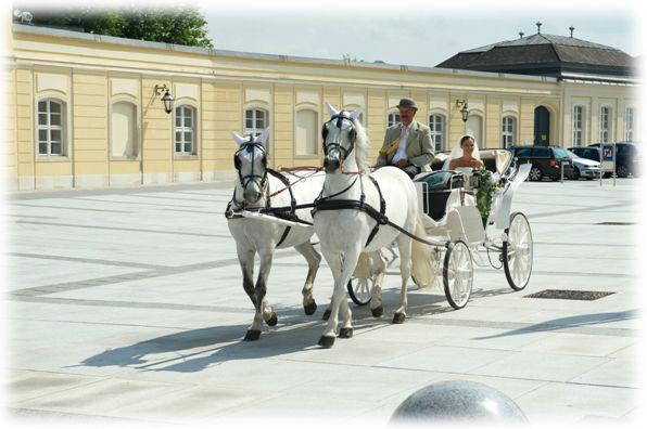 Beispiel: Hier kommt die Braut, Foto: Fiaker Wien.