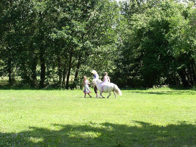 Beispiel: Ponyreiten im Garten, Foto: Schloss Neuhausen.