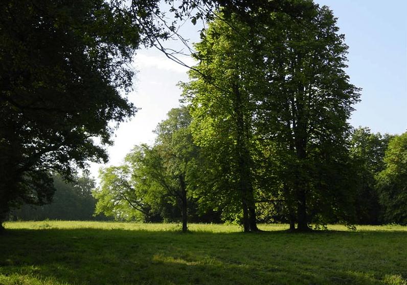 Orangerie de Maulny- le parc