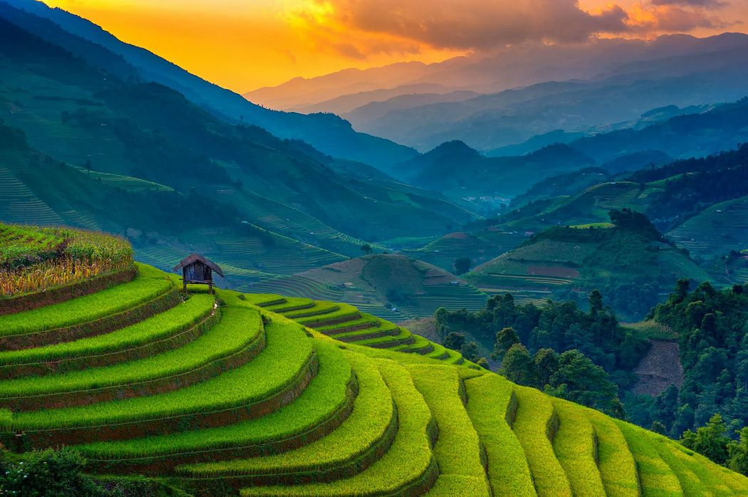 Vietnam 06 dias. Precio por persona desde  775€ . Solicita más informacion
