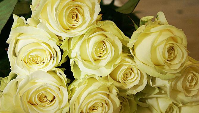 Beispiel: Wunderschöne Brautsträuße, Foto: Blumenhaus Mäglin.
