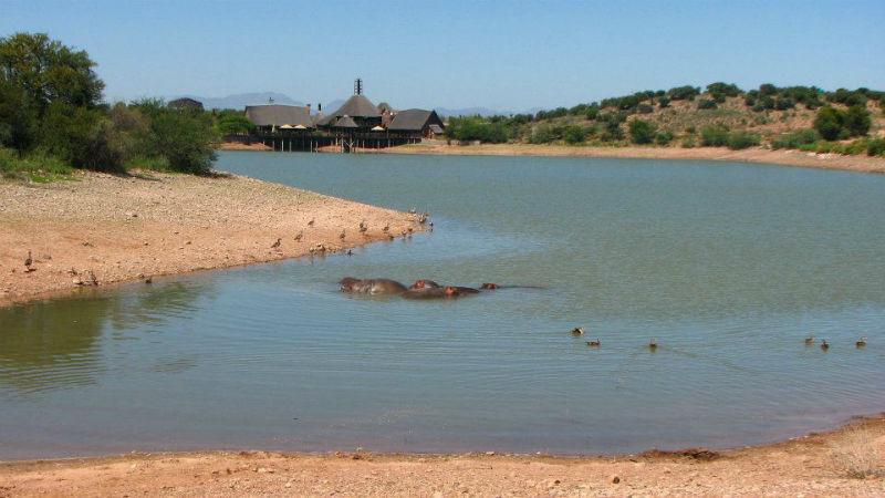 Beispiel: Unglaubliche Nähe zur Natur, Foto: Madiba.de.