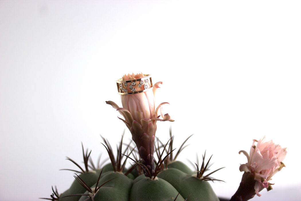 Afew Jewels - Anillo Florø 18K Oro Rosa + 0.22Ct Brillantes Blancos