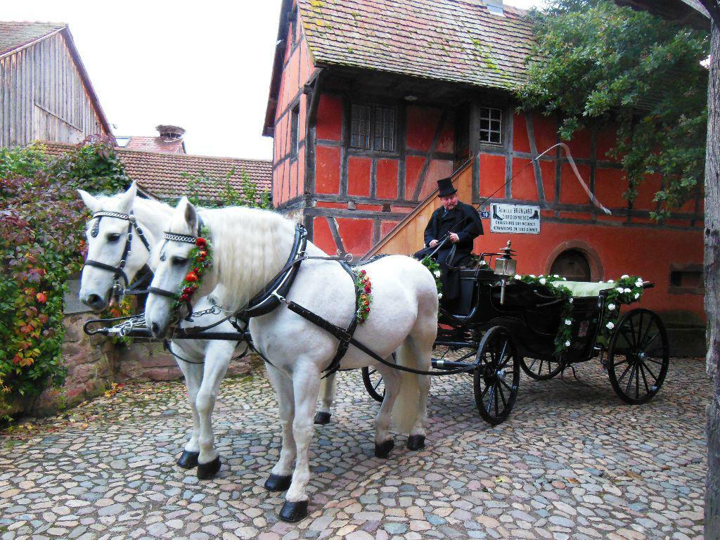 Beispiel: Die Pferdekutsche für Ihren großen Tag, Foto: Kutschfahrten Weber.