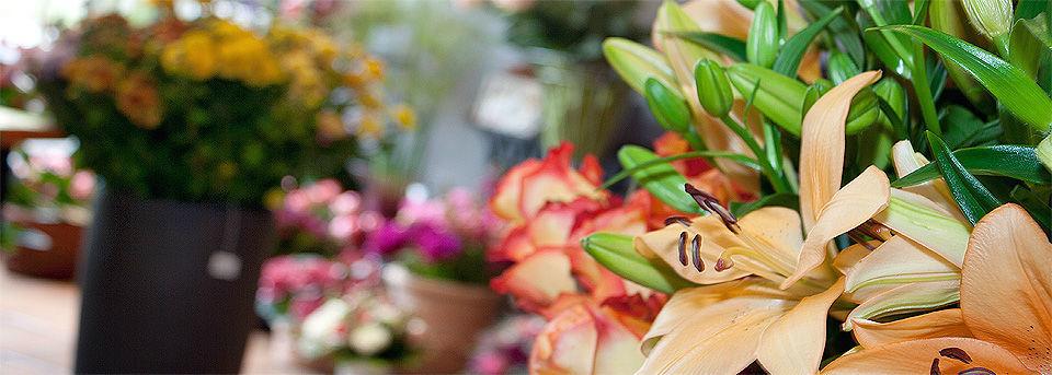 Beispiel: Blumenschmuck, Foto: Blumen Wind.