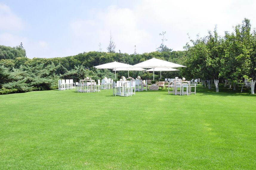 Coctel de Bienvenida Jardín Ciruelos.