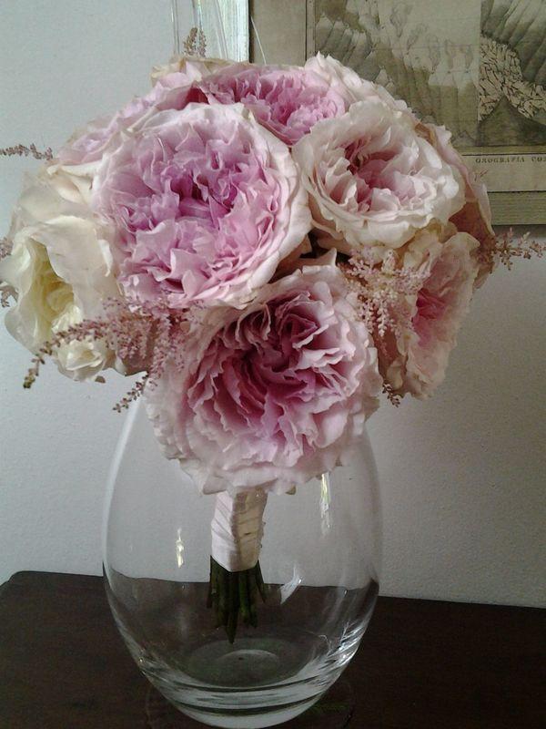 Tania Muser Bouquet rose David Austin