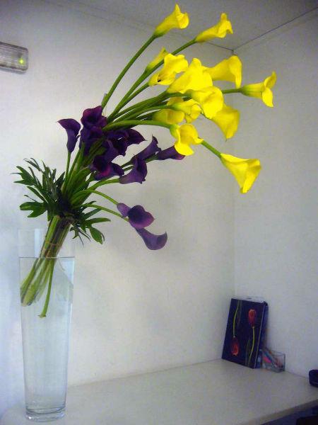 Flores Herbs