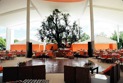 Esta carpa se instaló en una hacienda en Tepeji del Río, Hidalgo, para una boda en el seno de una familia arraigada a las tradiciones mexicanas, razón por la que los motivos de decoración fueron sillas de montar y cuerdas de yute.  La altura de la carpa fue de 8 metros, con un espacio para 500 personas, y espacios adicionales para la cocina y los baños.