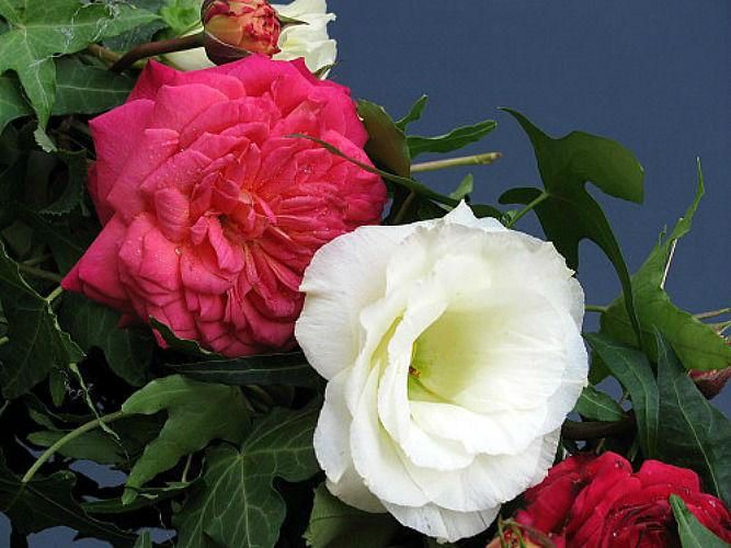Beispiel: Brautstraussimpressionen, Foto: Magnolia.