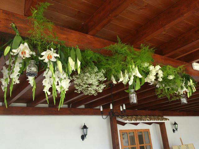 techo floral