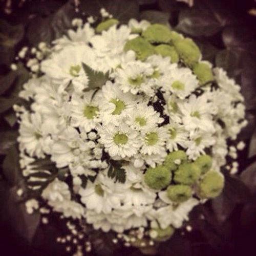 Bouquet margaritas