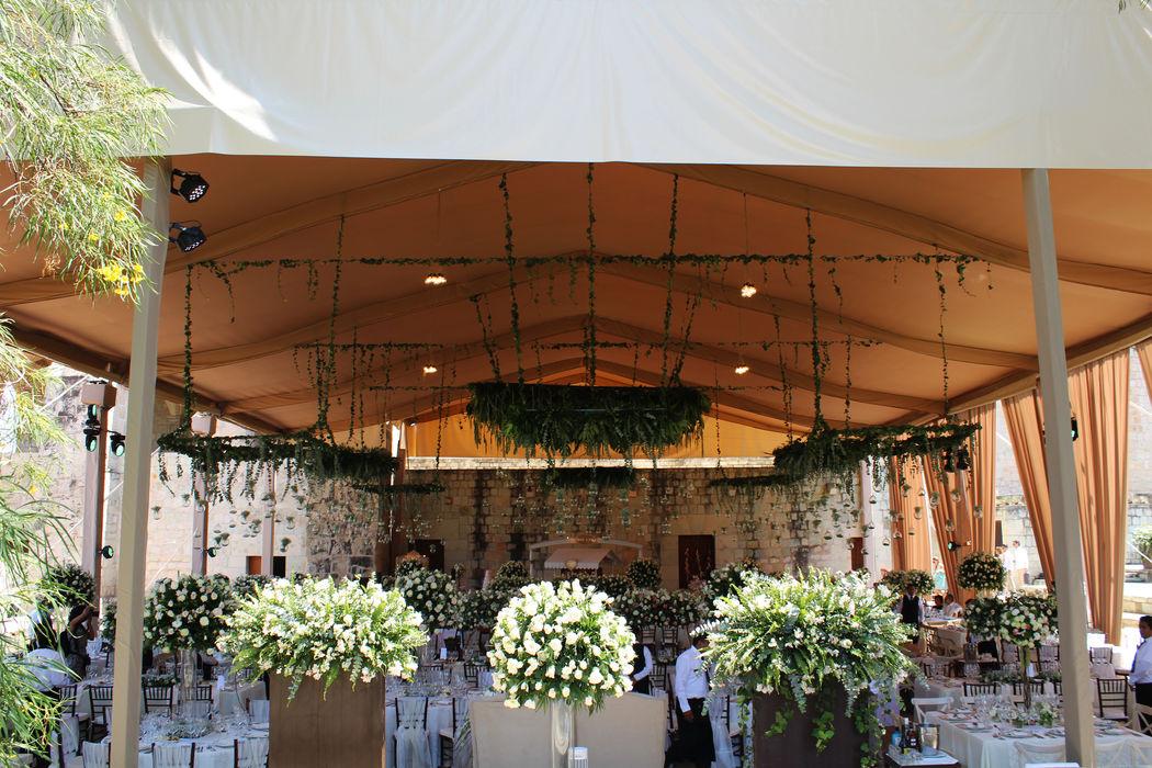 ::BODA:: Lugar: Jardín Etnobotánico, Oaxaca.  Carpa beige con cortinas de tela.