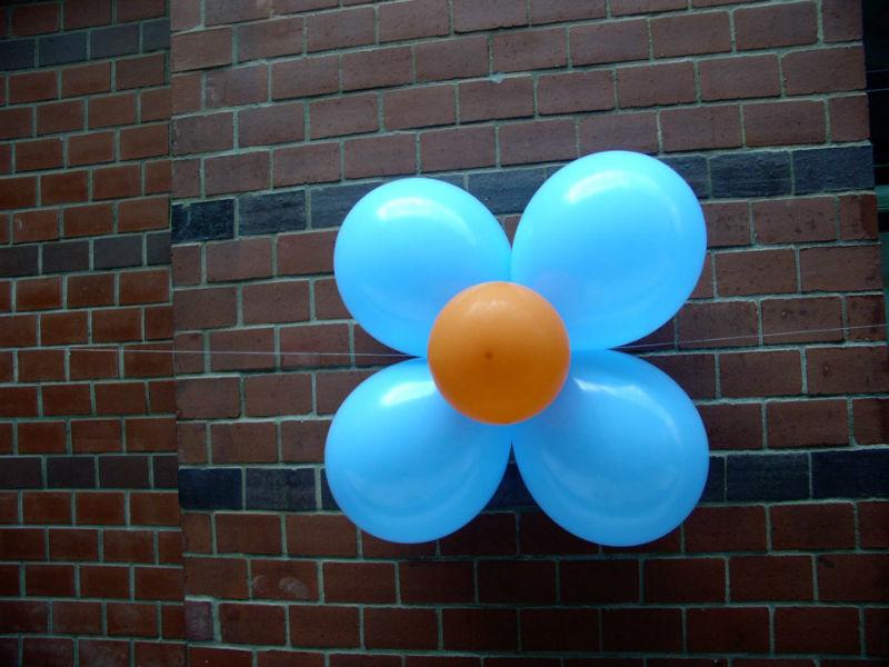 Beispiel: Ballonblume, Foto: Ballonverpackung.
