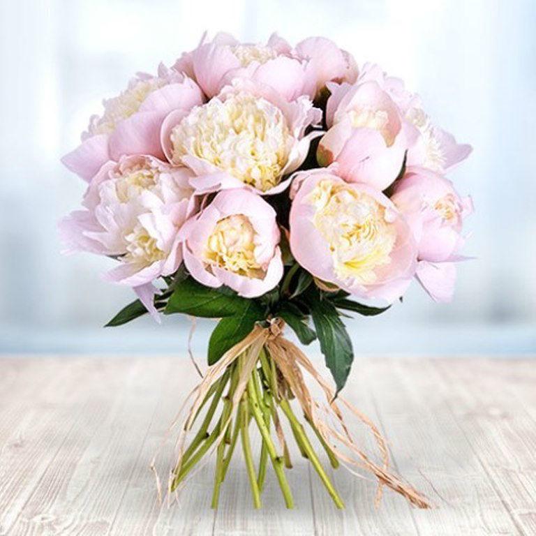 Beispiel: Strauß aus 12 Pfingstrosen, Foto: Valentins.de Blumen & Geschenke.
