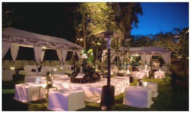 Camelia Wedding Planner & Event