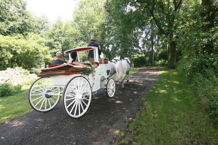 Beispiel: Hochzeitskutsche, Foto: Milanhof.