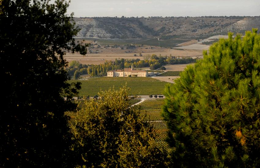 Abadía Retuerta Le Domaine