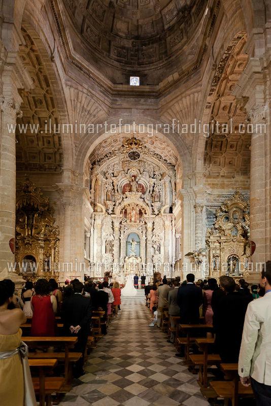 iluminArte Fotografia Digital