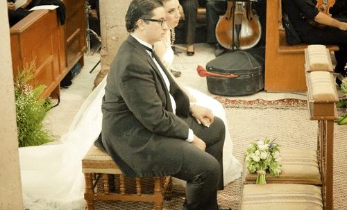 María José Dipp