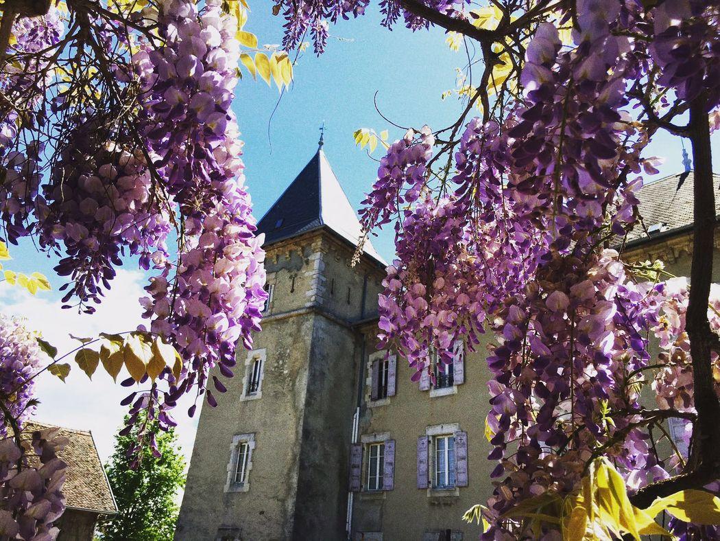Château - Vue de puis la Grange