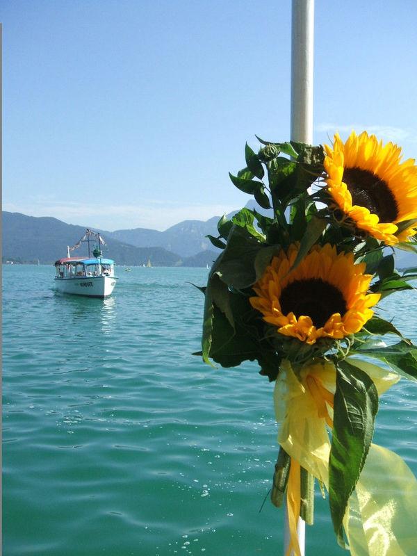 Beispiel: Blumenschmuck, Foto: Mondsee Schifffahrt.