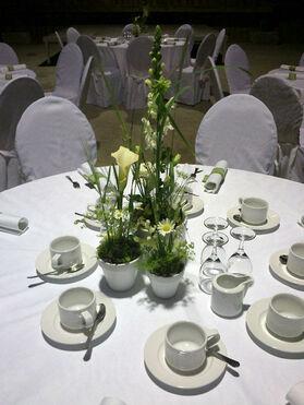 Beispiel: Tischdekoration, Foto: Blumenkiste.