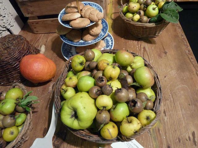 Cascina Alessi - il raccolto invernale dell' Orto dei frutti dimenticati