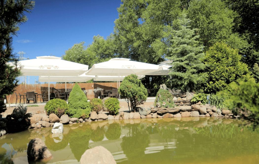 Piękny ogródek z oczkiem wodnym w restauracji Gloger House.