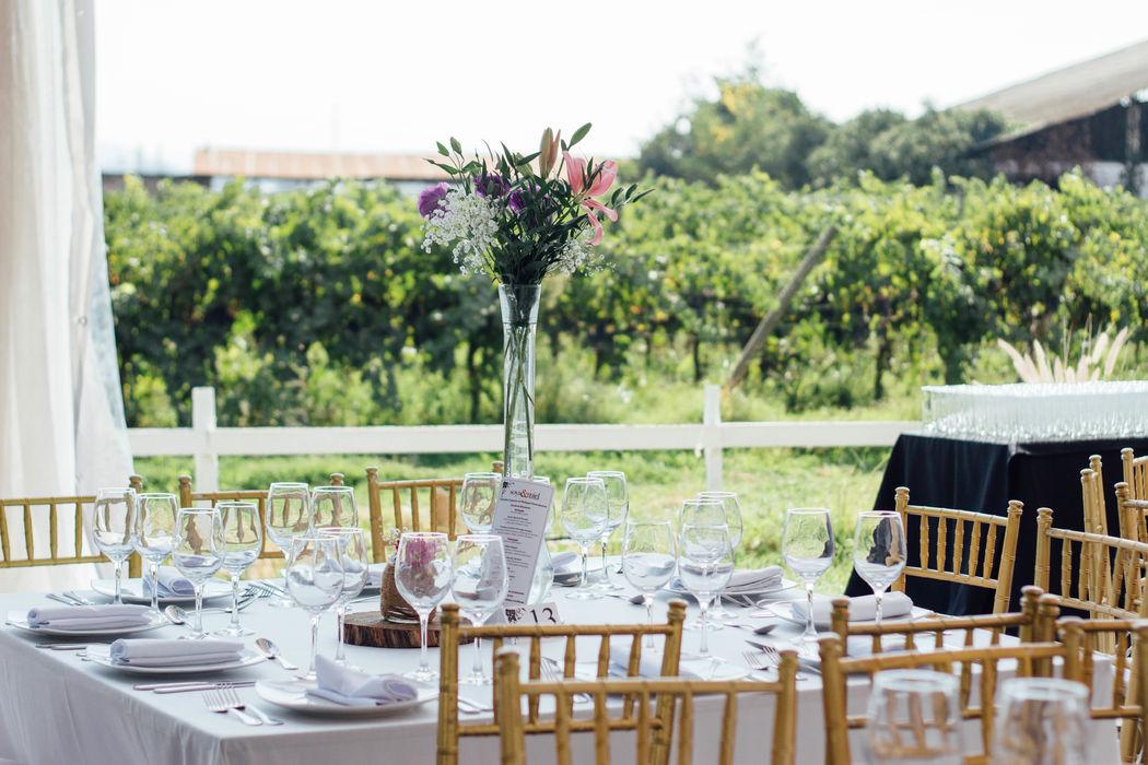 Zona comedor con vista la viña