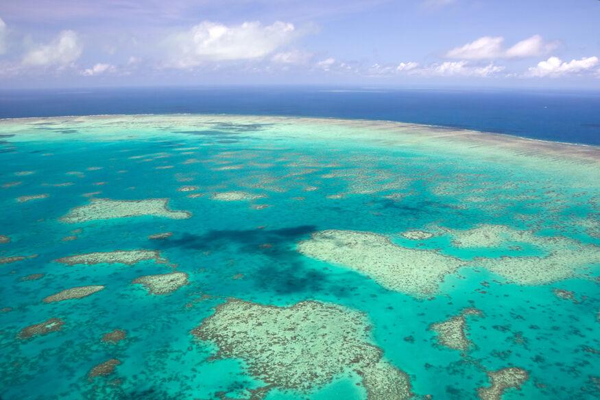 Australia  - Barriera Corallina -
