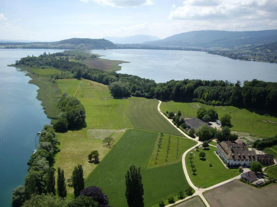 Beispiel: Luftaufnahme, Foto: St. Petersinsel Restaurant & Klosterhotel.