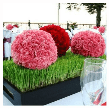 Pétalos Floristas Cheste